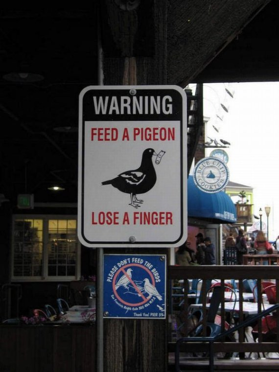 Didn't know those suckers were that dangerous!