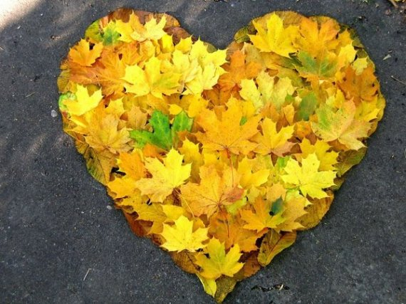 600_autumnleavesheart2ia91