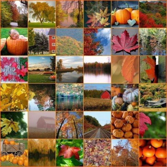 700_autumn-2
