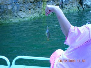 the smallest fish I caught which I sent back to get his bigger relatives